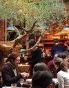 """""""Paris Vegan Day"""" : on mise sur le bio et bon"""