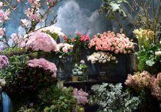 Fleuristes parisiens : nos adresses coups de coeur