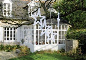 Noël lumineux au jardin