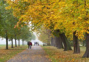 Susan Sarandon révèle son endroit secret le plus romantique