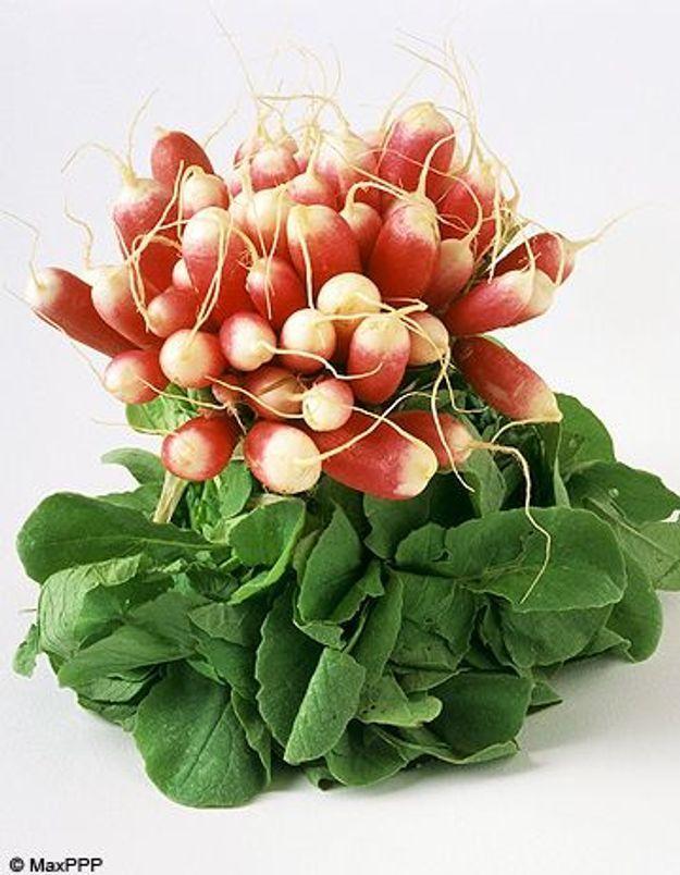 Focus nutrition : le radis
