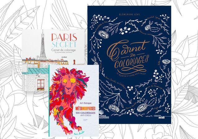livres de coloriage antistress les meilleures sorties de la saison - Livre De Coloriage Anti Stress