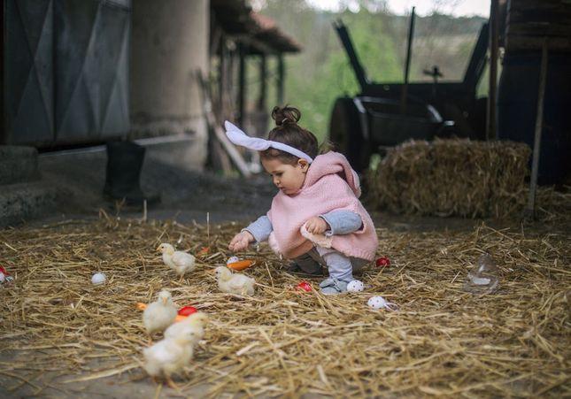 Pâques : découvrez 8 spots où chasser les oeufs en France