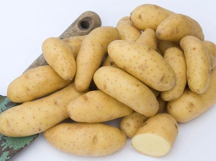 Les pommes de terre ratte