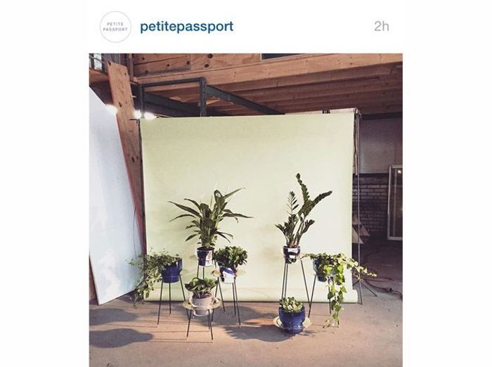 @petitepassport