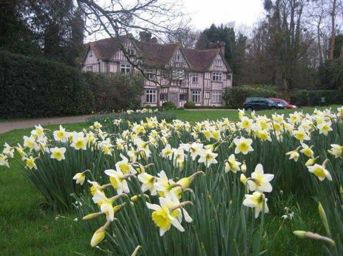 Visite d un jardin anglais dans la campagne britannique for Visiter les jardins anglais