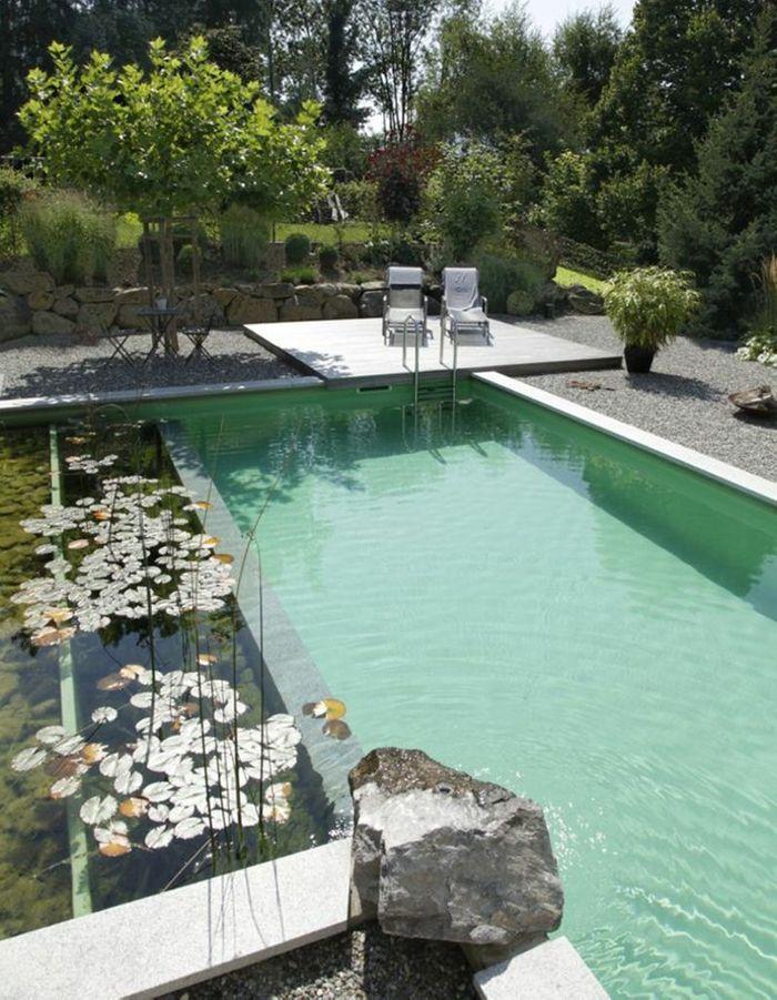 Piscine rectangulaire avec bassin végétal