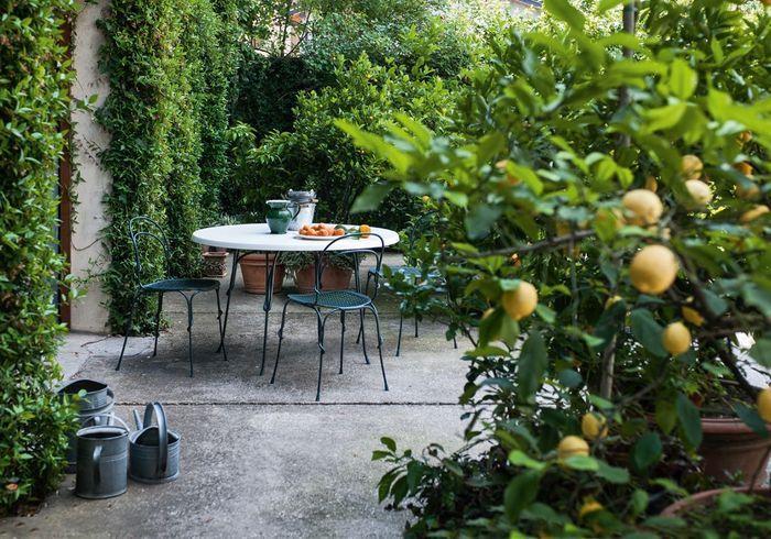 Une terrasse zen très végétale