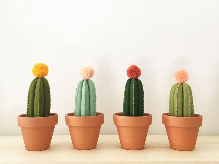 Des cactus en feutrine