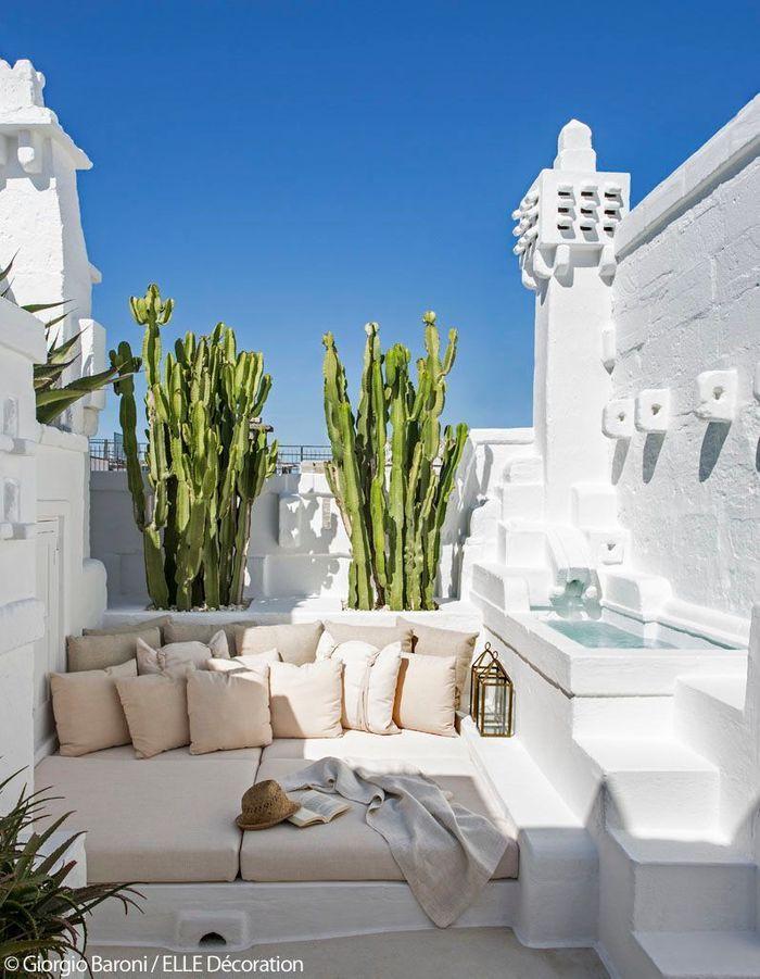 Un bassin paradisiaque sur les toits