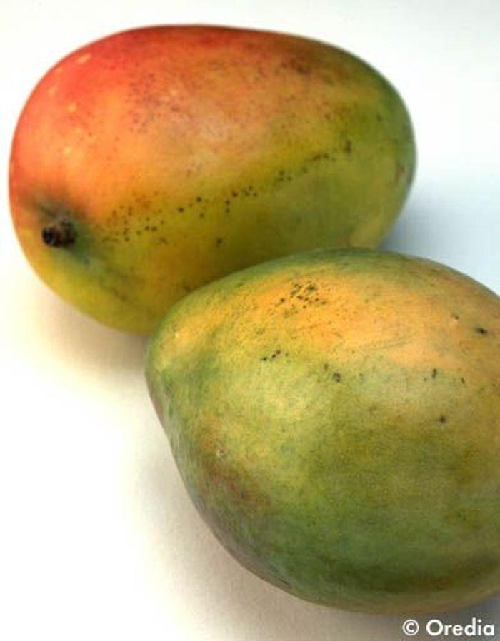 10 id es pour cuisiner la mangue autrement elle table - Des idees pour la cuisine ...
