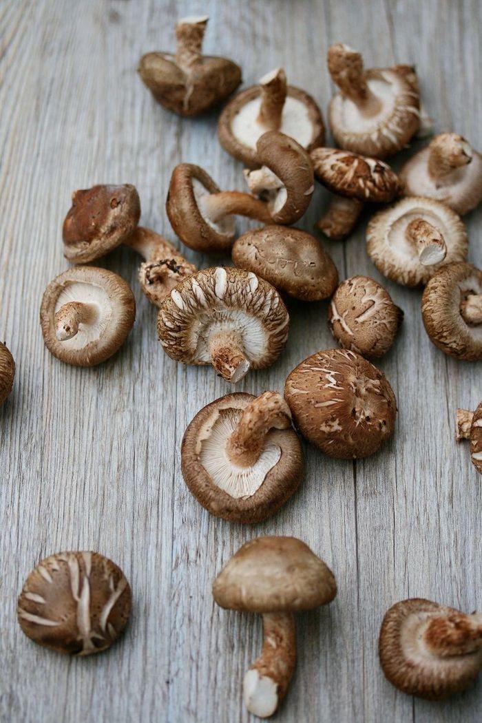 Le shiitak ou lentin de ch ne quels fruits et l gumes de saison en septembre elle table - Cuisine de saison septembre ...