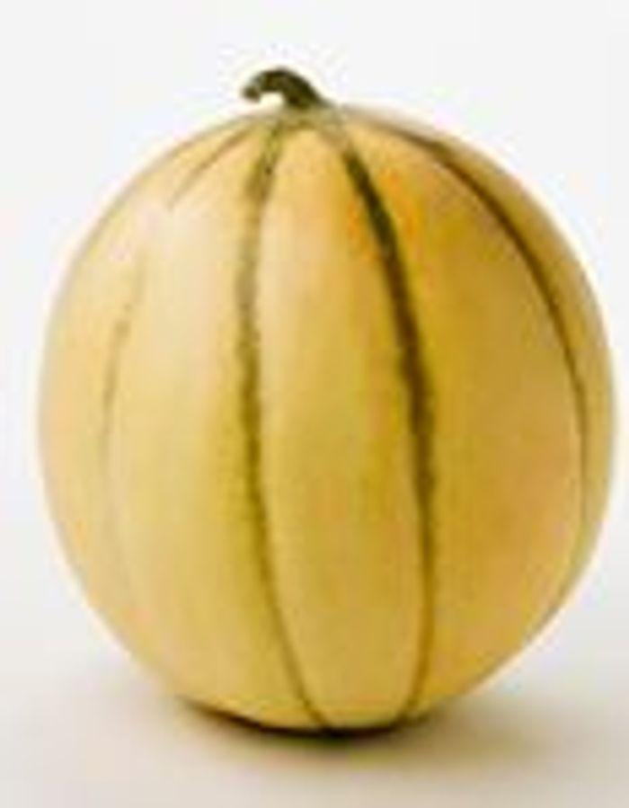 Faire murir un melon maison design - Comment faire murir un melon ...