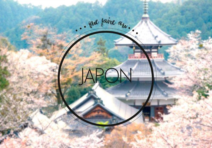 que faire au japon notre guide de bonnes adresses pour savoir o aller au japon elle. Black Bedroom Furniture Sets. Home Design Ideas