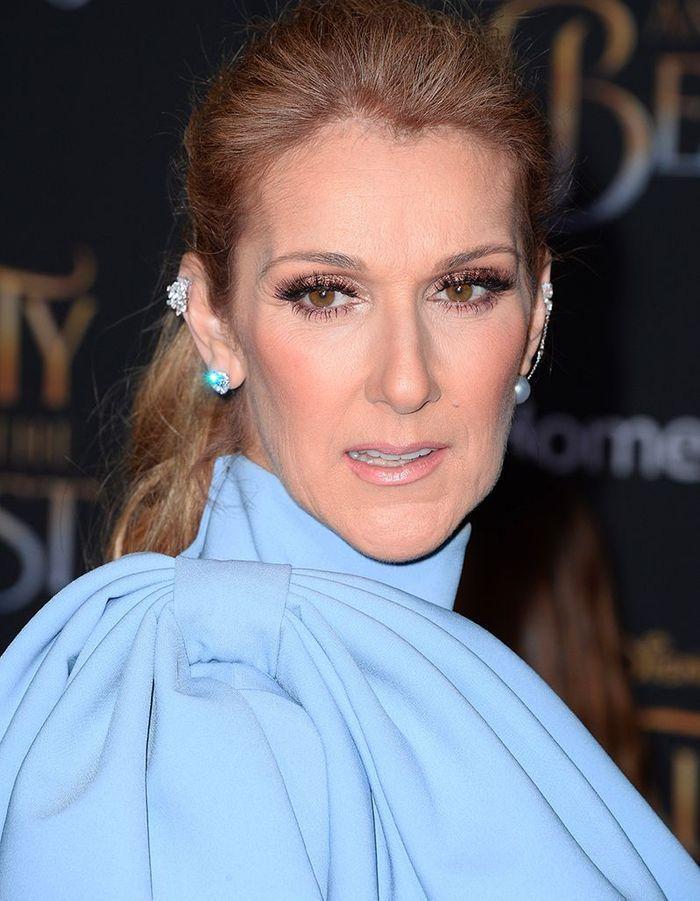 Céline Dion : sa transformation de ses débuts à aujourd'hui