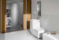 WC : aménager et décorer les toilettes